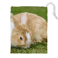 Beautiful Blue Eyed Bunny On Green Grass Drawstring Pouches (xxl) by Ucco