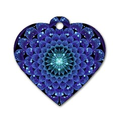 Accordant Electric Blue Fractal Flower Mandala Dog Tag Heart (two Sides) by jayaprime