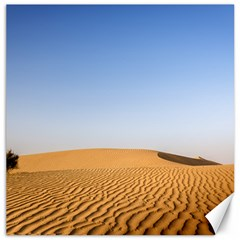 Desert Dunes With Blue Sky Canvas 20  X 20   by Ucco