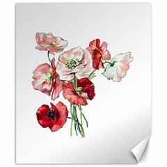 Flowers Poppies Poppy Vintage Canvas 8  X 10  by Celenk