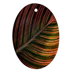 Leaf Colorful Nature Orange Season Ornament (oval) by Celenk