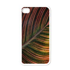 Leaf Colorful Nature Orange Season Apple Iphone 4 Case (white) by Celenk