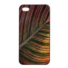 Leaf Colorful Nature Orange Season Apple Iphone 4/4s Seamless Case (black) by Celenk