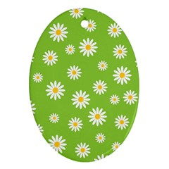 Daisy Flowers Floral Wallpaper Ornament (oval) by Celenk