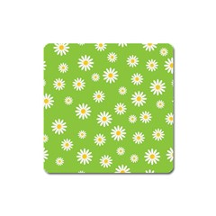Daisy Flowers Floral Wallpaper Square Magnet