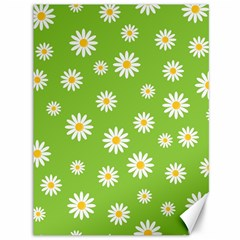Daisy Flowers Floral Wallpaper Canvas 36  X 48   by Celenk