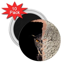 Owl Hiding Peeking Peeping Peek 2 25  Magnets (10 Pack)  by Celenk