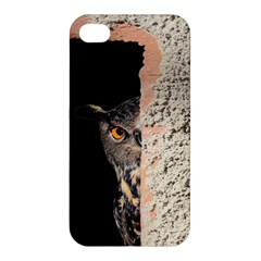 Owl Hiding Peeking Peeping Peek Apple Iphone 4/4s Premium Hardshell Case by Celenk