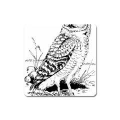 Animal Bird Forest Nature Owl Square Magnet