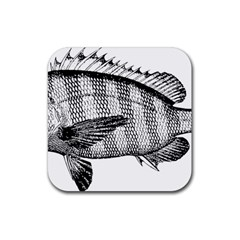 Animal Fish Ocean Sea Rubber Square Coaster (4 Pack)  by Celenk
