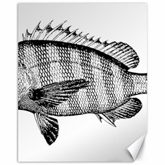 Animal Fish Ocean Sea Canvas 11  X 14   by Celenk