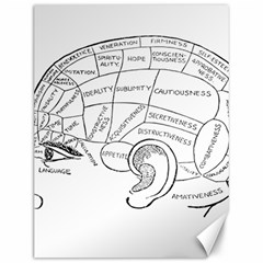 Brain Chart Diagram Face Fringe Canvas 12  X 16   by Celenk