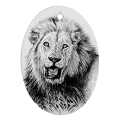 Lion Wildlife Art And Illustration Pencil Ornament (oval)