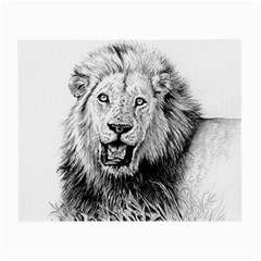 Lion Wildlife Art And Illustration Pencil Small Glasses Cloth by Celenk