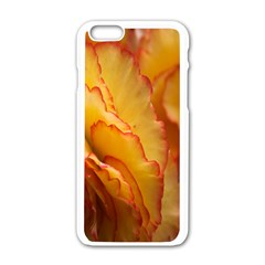 Flowers Leaves Leaf Floral Summer Apple Iphone 6/6s White Enamel Case by Celenk