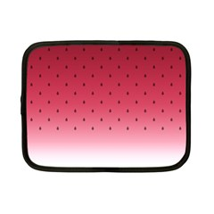Watermelon Netbook Case (small)  by jumpercat