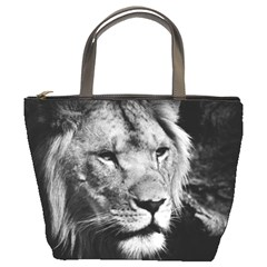 Africa Lion Male Closeup Macro Bucket Bags