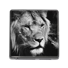 Africa Lion Male Closeup Macro Memory Card Reader (square) by BangZart