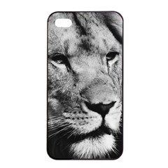 Africa Lion Male Closeup Macro Apple Iphone 4/4s Seamless Case (black) by BangZart