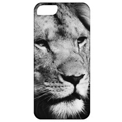 Africa Lion Male Closeup Macro Apple Iphone 5 Classic Hardshell Case