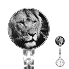 Africa Lion Male Closeup Macro Stainless Steel Nurses Watch by BangZart