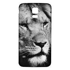 Africa Lion Male Closeup Macro Samsung Galaxy S5 Back Case (white) by BangZart
