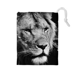 Africa Lion Male Closeup Macro Drawstring Pouches (large)  by BangZart