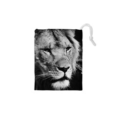 Africa Lion Male Closeup Macro Drawstring Pouches (xs)