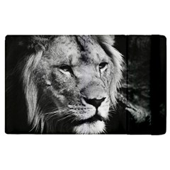 Africa Lion Male Closeup Macro Apple Ipad Pro 9 7   Flip Case by BangZart
