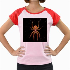 Insect Macro Spider Colombia Women s Cap Sleeve T Shirt