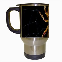 Insect Macro Spider Colombia Travel Mugs (white) by BangZart