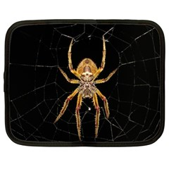 Insect Macro Spider Colombia Netbook Case (xl)