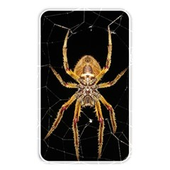 Insect Macro Spider Colombia Memory Card Reader by BangZart