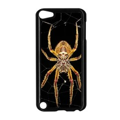 Insect Macro Spider Colombia Apple Ipod Touch 5 Case (black) by BangZart