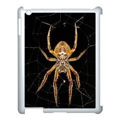 Insect Macro Spider Colombia Apple Ipad 3/4 Case (white)