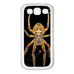 Insect Macro Spider Colombia Samsung Galaxy S3 Back Case (white)