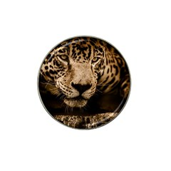 Jaguar Water Stalking Eyes Hat Clip Ball Marker by BangZart
