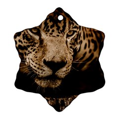 Jaguar Water Stalking Eyes Snowflake Ornament (two Sides)