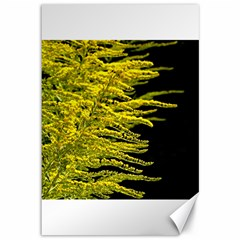 Golden Rod Gold Diamond Canvas 12  X 18   by BangZart