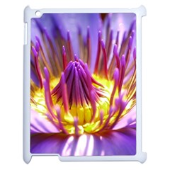 Flower Blossom Bloom Nature Apple Ipad 2 Case (white) by BangZart