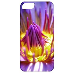 Flower Blossom Bloom Nature Apple Iphone 5 Classic Hardshell Case