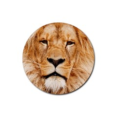 Africa African Animal Cat Close Up Rubber Round Coaster (4 Pack)