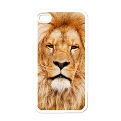 Africa African Animal Cat Close Up Apple Iphone 4 Case (white)