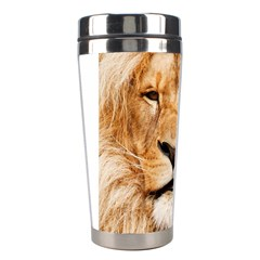 Africa African Animal Cat Close Up Stainless Steel Travel Tumblers by BangZart