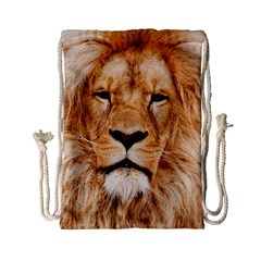 Africa African Animal Cat Close Up Drawstring Bag (small)