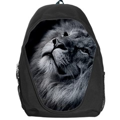 Feline Lion Tawny African Zoo Backpack Bag by BangZart