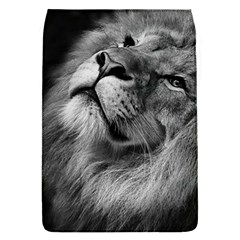 Feline Lion Tawny African Zoo Flap Covers (s)