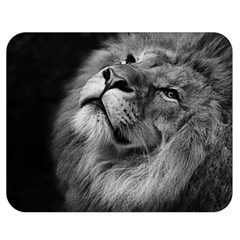 Feline Lion Tawny African Zoo Double Sided Flano Blanket (medium)