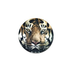 Tiger Bengal Stripes Eyes Close Golf Ball Marker (10 Pack) by BangZart