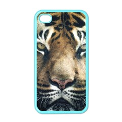 Tiger Bengal Stripes Eyes Close Apple Iphone 4 Case (color) by BangZart
